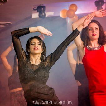 Ludovica festa